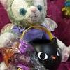 HAPPY HALLO WEEN!!猫ランタンとぬいぐるみさん達のハロウィン♪