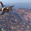 GTA5「スカイダイビング」