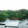 京都、梅小路公園にて