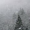 またまた雪景色