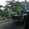 フィリピンでは、車の荷台は座席です(;^ω^)
