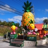【パイナップル食べ放題】南国感を楽しめる「ナゴパイナップルパーク」へ