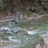 吉野川に会いにいく