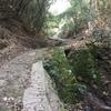 水呑地蔵へ。なんちゃってトレラン14kmは、清らかな緑と水と、在原業平のロマンに包まれた山の道を走る!