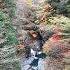 奈良のおすすめ紅葉!!スポット!2017年みたらい渓谷の紅葉に行ってきた(^^♪