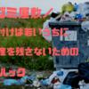 脱ゴミ屋敷|家の片付けは若いうちに|負の遺産を残さないためのライフハック