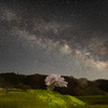 【花の福島2021】田村市・小沢の桜と星空の写真を撮ってきました!〜天に星,地には花