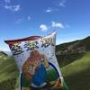 台湾人と行く夏休み台湾旅行#2  合歡山