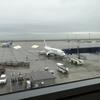 JAL3084便(NGO→NRT)搭乗記~カウンターで起きた2つの事件~