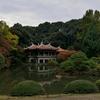 【散歩】新宿御苑の日本庭園