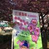 【マラソン】三浦国際市民ハーフマラソンに出場しました!