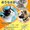 【大阪府和泉市1/26保護犬猫里親会情報】第19回ねこといぬのおうちさがし@和泉市