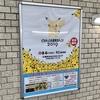 「ピカチュウ大量発生チュウ!2019」関連 イベント・グッズ情報