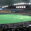 6月13日、阪神タイガース戦