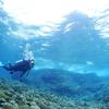 ♪PADIオープンウォーターおめでとうございます♪〜沖縄那覇貸切ライセンス講習ダイビングショップ〜