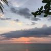 スリランカでアーユルヴェーダ11 セルフcleaning day…