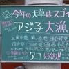 サビキ釣り。熊本でアジ子釣ってます。
