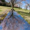 ただいま開園中:前沢ガーデン・桜花園