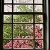 京都府庁旧館・中庭の縦構図・オリンパス PEN EES-2