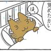 ハトぱっぱ23
