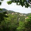 ナガモッコク尾根から赤子谷西尾根のハイキング(その2)ナガモッコク尾根後半