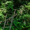 筥滝撮影 #上段への梯子