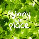 sunny place~夫側拒否のセックスレスを解消した私が教えます!レス解消専門カウンセラーが伝える、夫婦円満・レス解消への道~