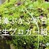 ご飯とお酒が大好きな女子大生ブロガーの「緑藻ぷかぷか日記」 学生ブロガー紹介_1