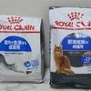 【食欲不振・嘔吐】猫がご飯を食べない時の対処