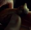 ハンニバル2.11 破壊と創造、再誕、受胎、切除 『香の物』深読み・ネタバレ