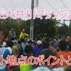 【フルマラソン完走~サブ4目標のランナー必見】しまだ大井川マラソンフル動画(1)