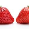 イチゴの栄養成分とメリット・デメリット!美味しいイチゴの見分け方!