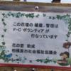 F・Cボランティア『相模原警察署前の植樹帯をきれいに!』ご覧ください!
