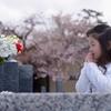 11月14日は「いい石の日」~仏様の前では何故手を叩かないのか?(*´▽`*)~