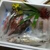 上関 お魚おまかせパック
