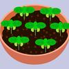 生ごみ処理機で肥料を作る-vol.9