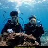 오키나와 체험 다이빙!