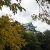 名城公園 2020.11.12
