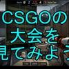 【CSGO】大会を見てみよう【初心者向け】
