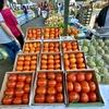 地球(日本)の真裏🌎:ブラジルの食材に見る、日系移民🇯🇵🇧🇷の足跡👣