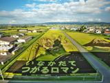 日本独自の芸術!壮大な「田んぼアート」を楽しめるスポット5選