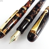 秋色のペン③ (枯れ葉色) パイロット万年筆レガンス、プラチナ ボールペン3776