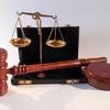 【発明】最高裁判決 S52.10.13(S49(行ツ)107) 獣医用組成物事件 /最高裁判決 H12.2.29(H10(行ツ)19) 黄桃の育種増殖法事件