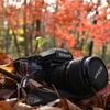 旅とカメラのこと