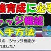 【ポケモン剣盾】 最強育成に必要な ジャッジ機能入手方法 #17【ポケモン剣盾 ポケモンソードシールド】