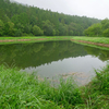 桜池(山梨県富士川)