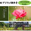 デジカメ散歩 IN 旧古河庭園【お知らせ】