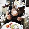 【東京都中央区保育園探し2017その③】認可外保育園決まりました!