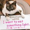 【週末英語 #234】英語であっさりしたものや軽い食事は「light」を使う