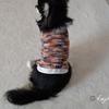 セリアの毛糸「ゆめみるひつじくん」2玉で編むチワワのセーター